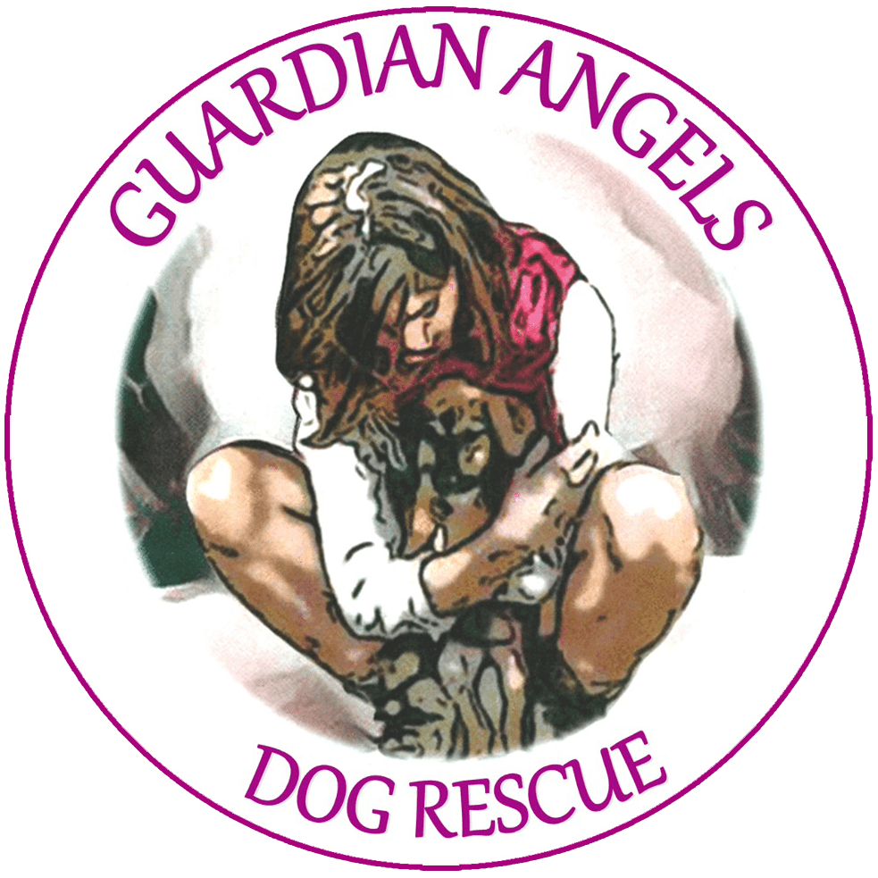 Guardian Angels Dog Rescue